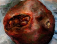Melissa Huang, Pomegranate, 2013, Video